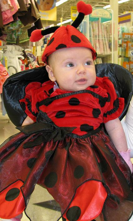 Ladybug  sc 1 st  Big Ryanu0027s Tall Tales : babies r us dragon costume  - Germanpascual.Com